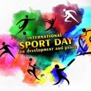 Международный день спорта  2017 фотографии