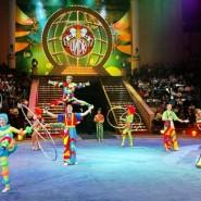 Международная цирковая программа в Тюменском цирке фотографии