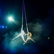 Цирковое шоу «Королевские Тигры Суматры» фотографии