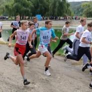 Фестиваль ГТО 2017 фотографии
