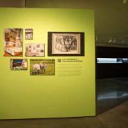 Выставка «Уральская индустриальная биеннале современного искусства» фотографии