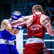 Первенство России по боксу фотографии