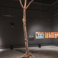 Выставка «Всё не то, чем кажется» фотографии