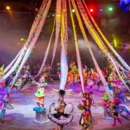 Тюменский государственный цирк фотографии
