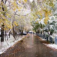 Анонс выставок и мероприятий «Музейный комплекс им. И. Я. Словцова» на октябрь 2019 года фотографии