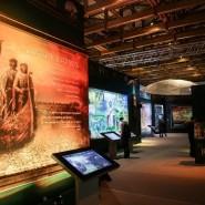 Мультимедийная выставка «Имена из солдатских медальонов» фотографии