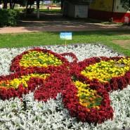 Фестиваль цветов «Na Ture»  2017 фотографии
