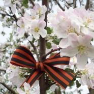Выставка «Весна Победы» фотографии