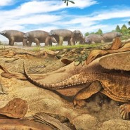 Цикл лекций «Занимательная палеонтология» фотографии