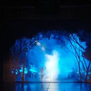 Балет  «Лебединое озеро» фотографии