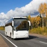 Автобусные экскурсии «Дарите любимым впечатления» фотографии