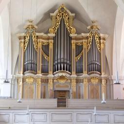 Органные концерты в Тюменском костеле