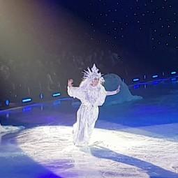 """Ледовое представление """"В гостях у сказки"""""""