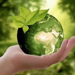 Семейный экофестиваль «Я= Планета»