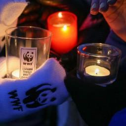 Акция «Час Земли» в Тюмени 2018