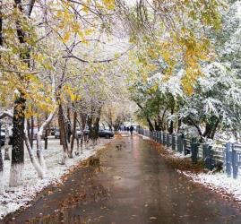 Анонс выставок и мероприятий «Музейный комплекс им. И. Я. Словцова» на декабрь 2020 года