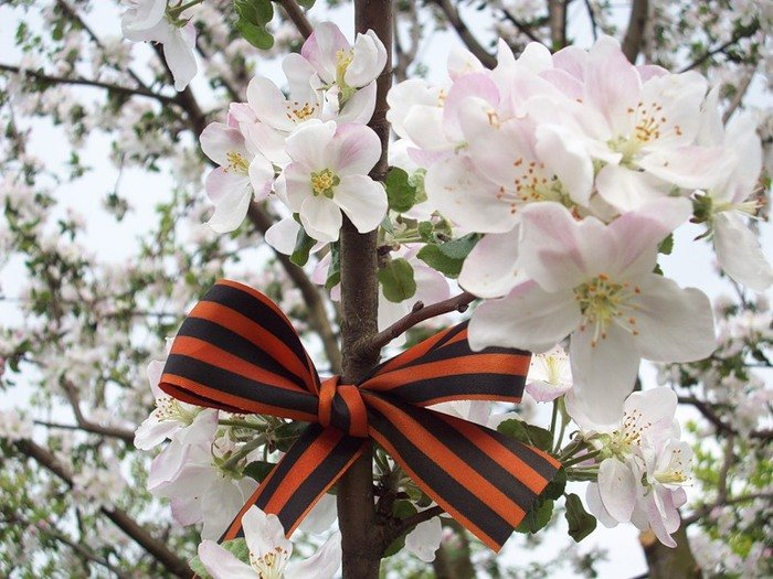 Выставка «Весна Победы»